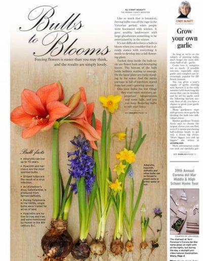 news.bulbs_cover_e_1_1_ql1ap1of